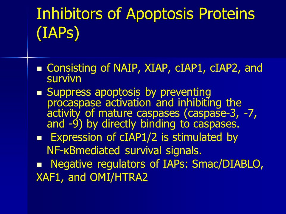 Inhibitors of Apoptosis Proteins (IAPs)
