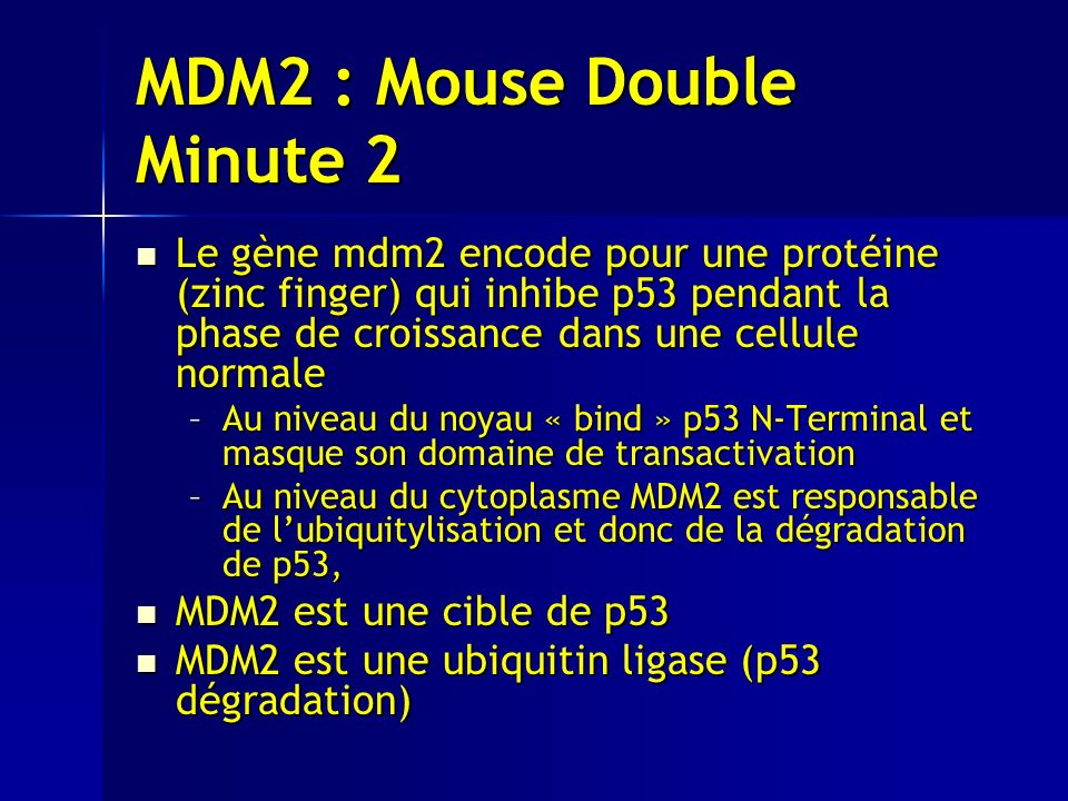 MDM2 : Mouse Double Minute 2