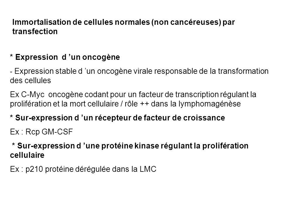 * Expression d 'un oncogène