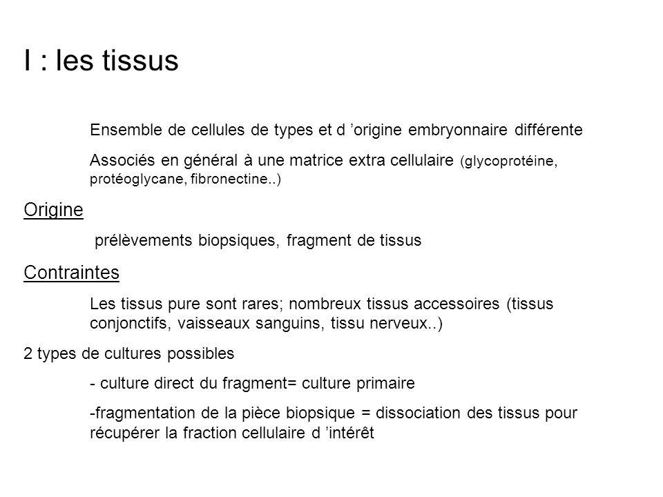 I : les tissus Origine Contraintes