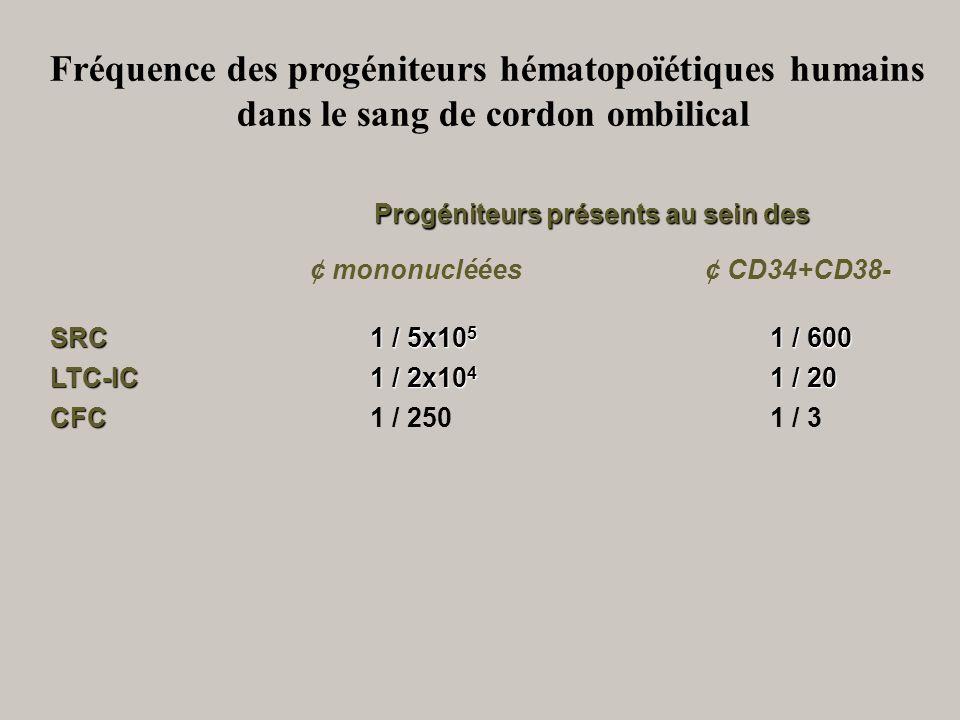 Fréquence des progéniteurs hématopoïétiques humains