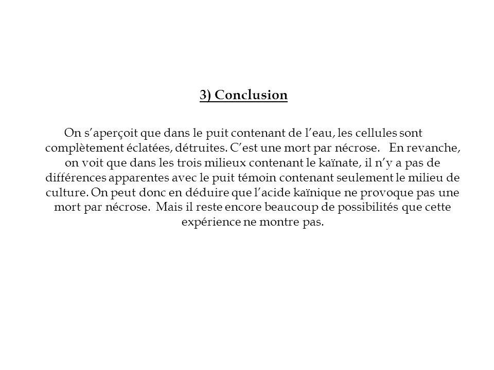 3) Conclusion