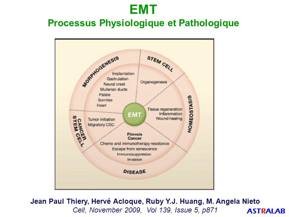EMT Processus Physiologique et Pathologique