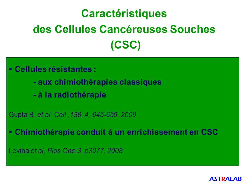 des Cellules Cancéreuses Souches