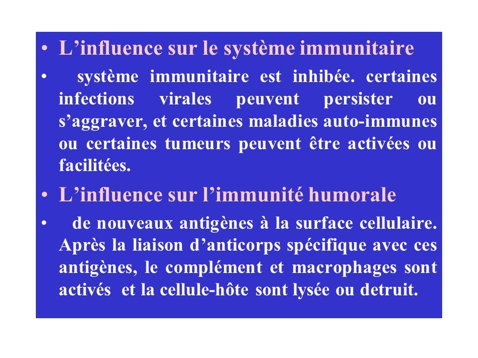 L'influence sur le système immunitaire
