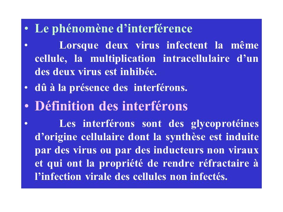Définition des interférons