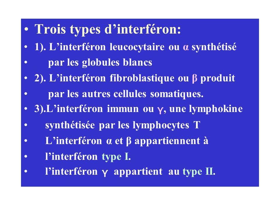 Trois types d'interféron: