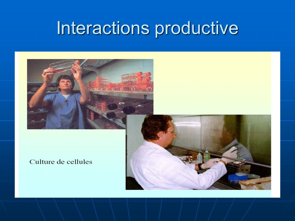 Interactions productive