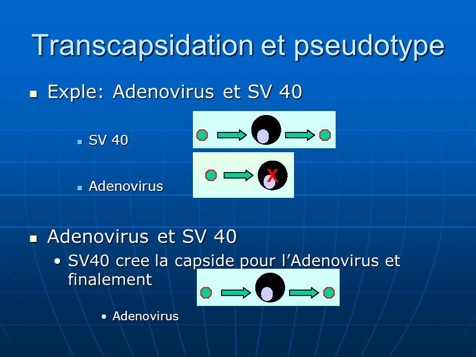Transcapsidation et pseudotype