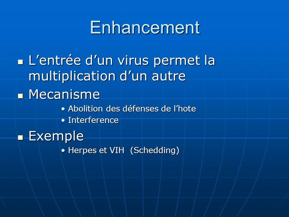 Enhancement L'entrée d'un virus permet la multiplication d'un autre