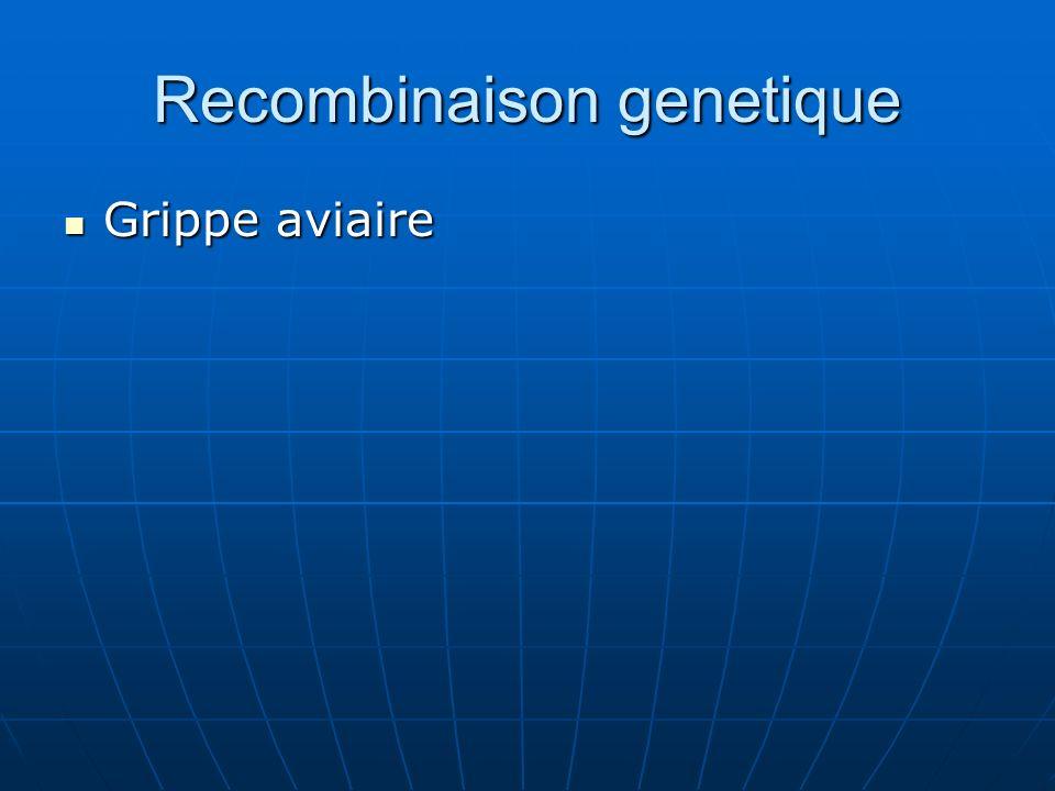 Recombinaison genetique