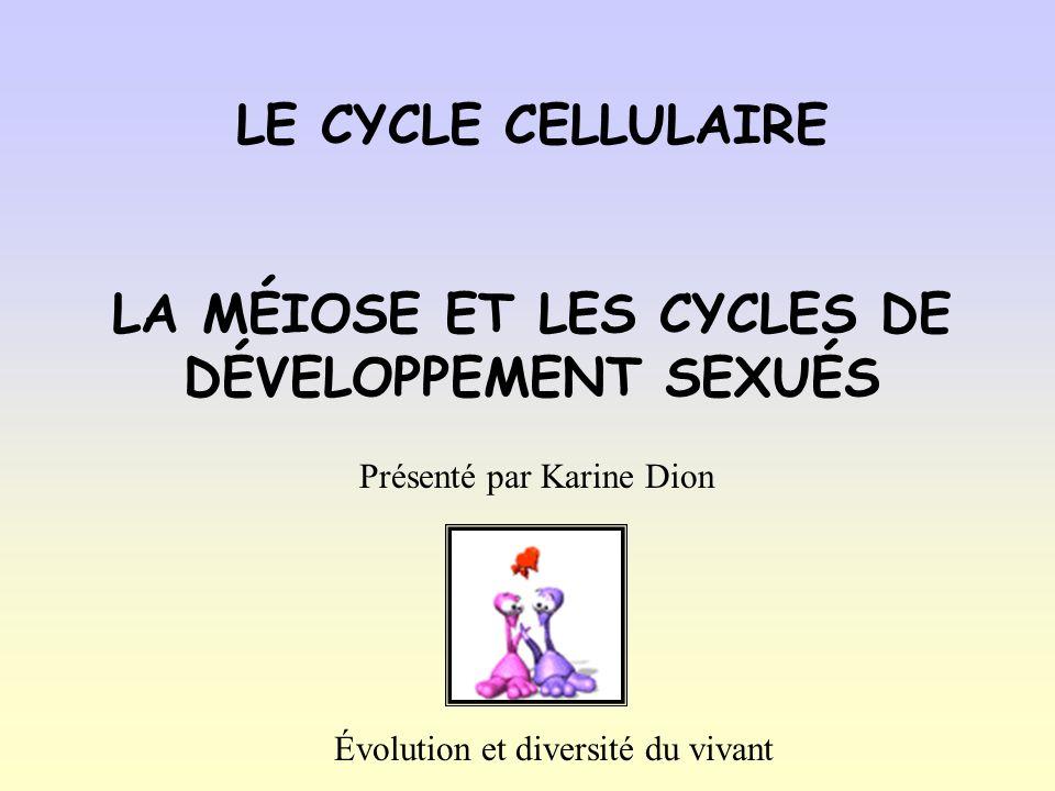 LE CYCLE CELLULAIRE LA MÉIOSE ET LES CYCLES DE DÉVELOPPEMENT SEXUÉS