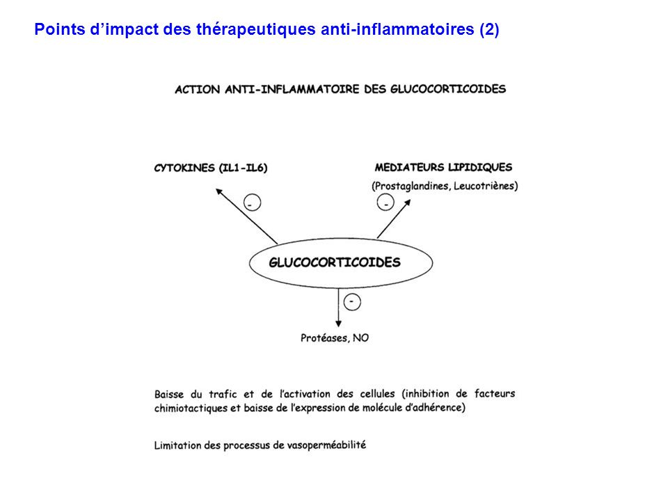 Points d'impact des thérapeutiques anti-inflammatoires (2)