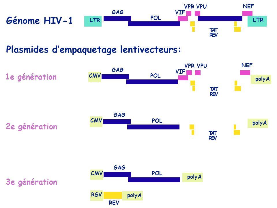 Plasmides d'empaquetage lentivecteurs: