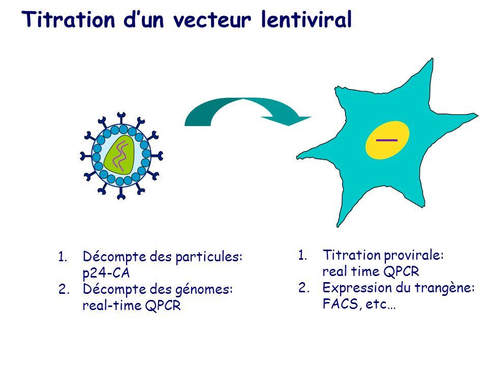 Titration d'un vecteur lentiviral