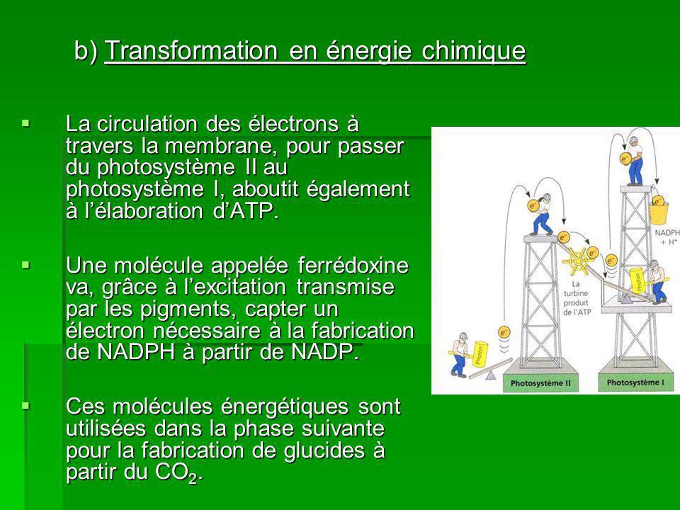 b) Transformation en énergie chimique