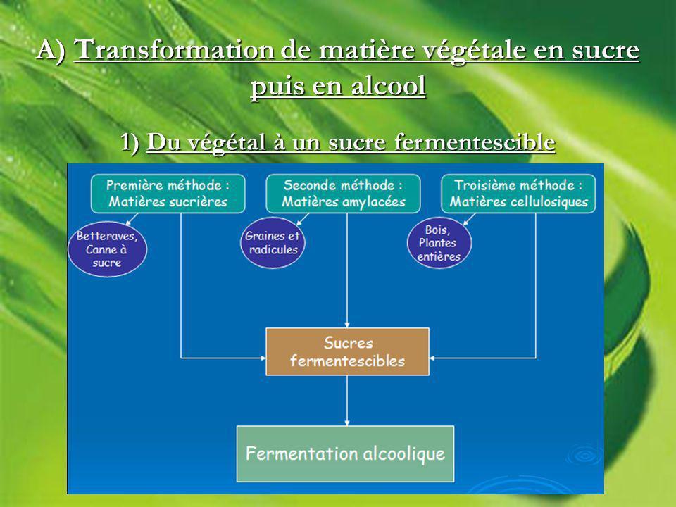 A) Transformation de matière végétale en sucre puis en alcool