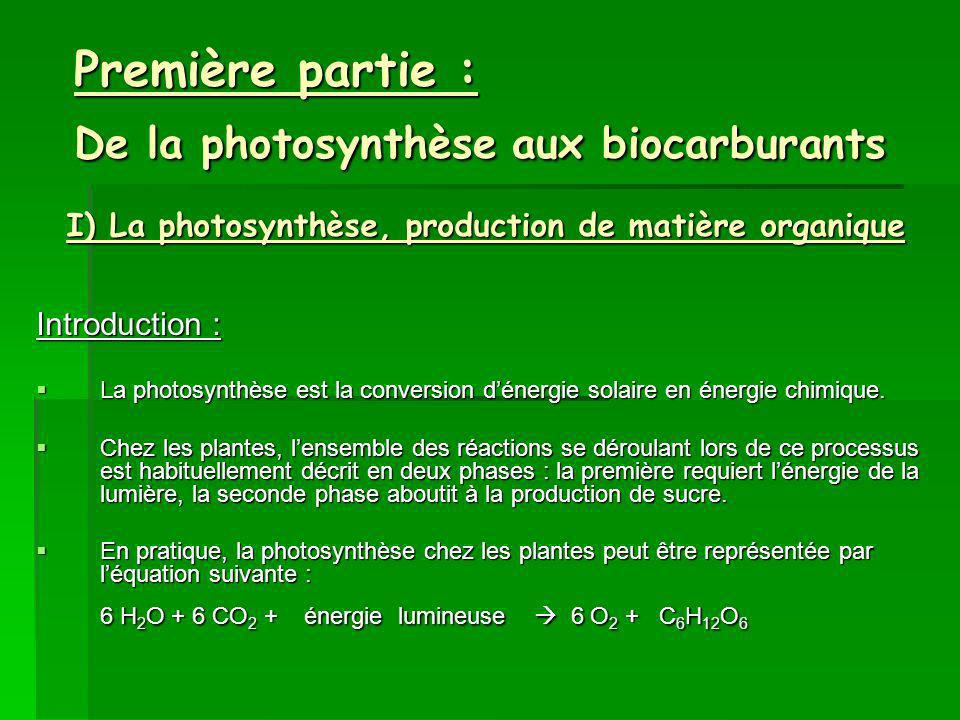 Première partie : De la photosynthèse aux biocarburants