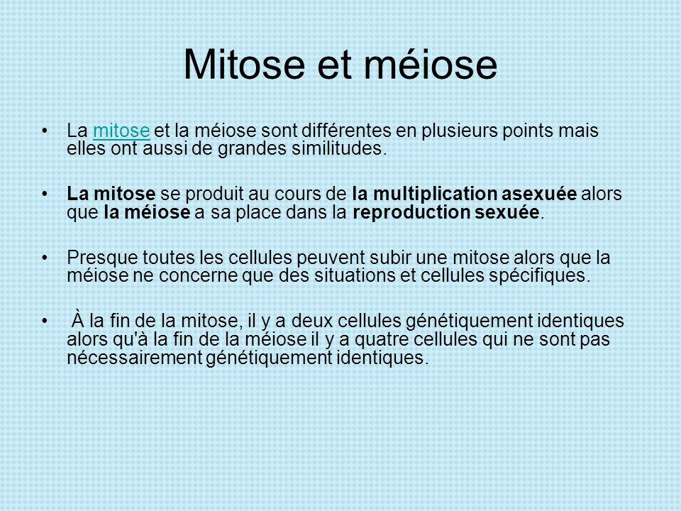 Mitose et méiose La mitose et la méiose sont différentes en plusieurs points mais elles ont aussi de grandes similitudes.