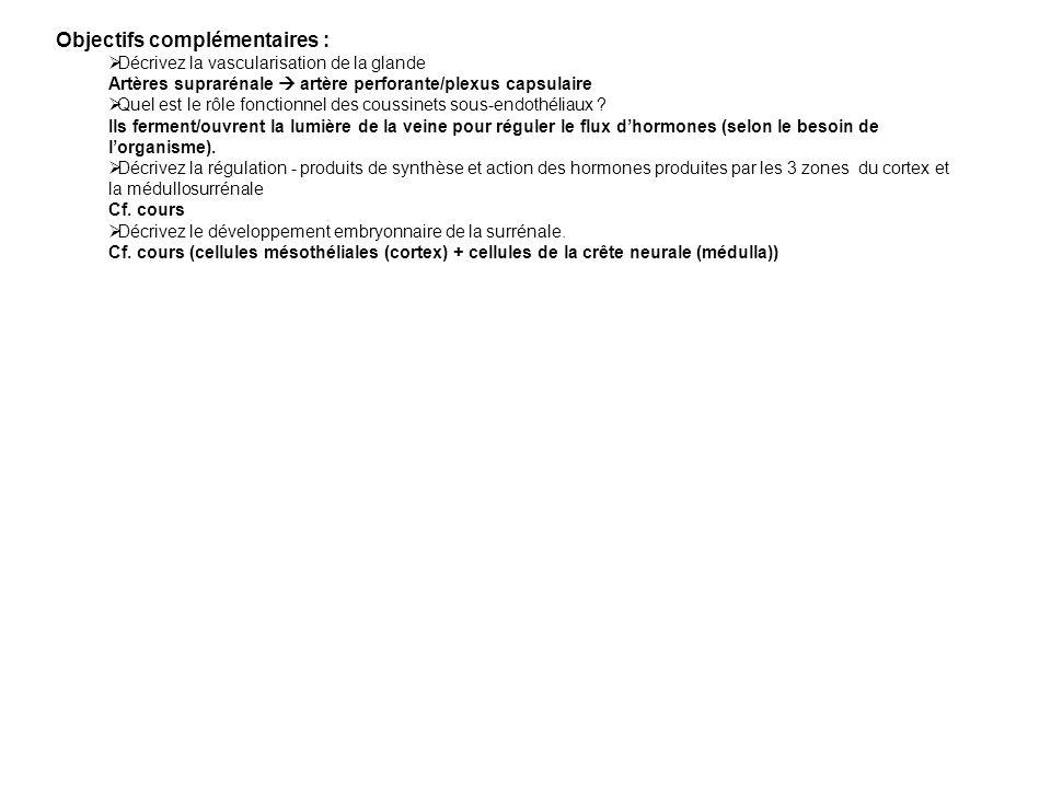 Objectifs complémentaires :