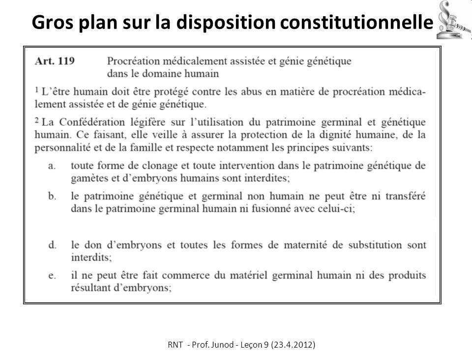 Gros plan sur la disposition constitutionnelle