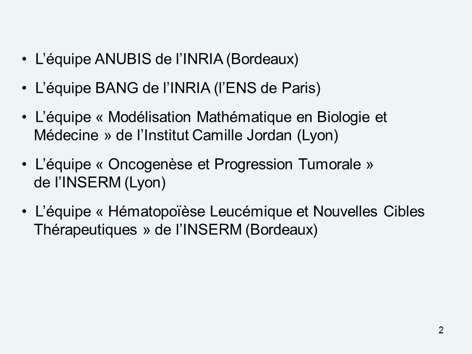 L'équipe ANUBIS de l'INRIA (Bordeaux)