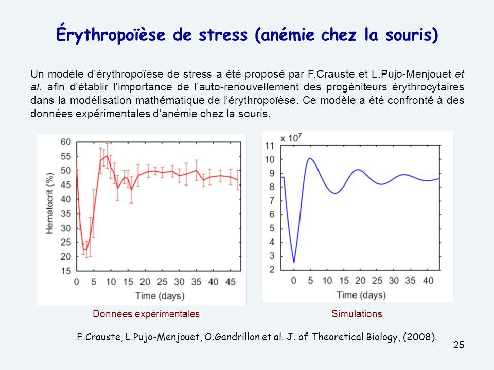 Érythropoïèse de stress (anémie chez la souris)