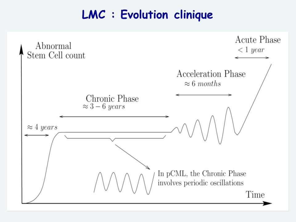 LMC : Evolution clinique