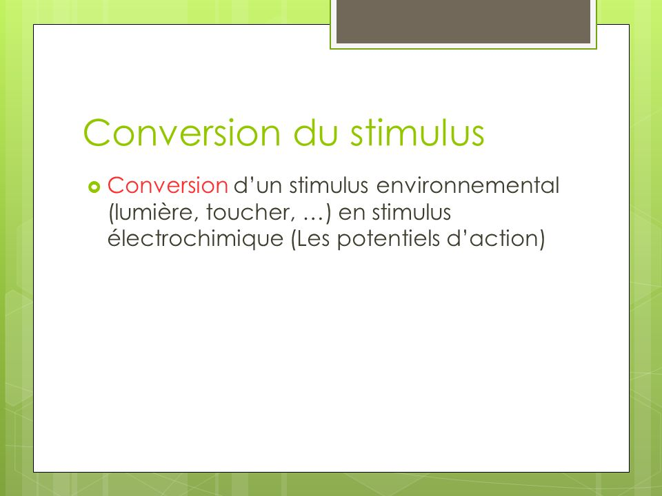 Conversion du stimulus