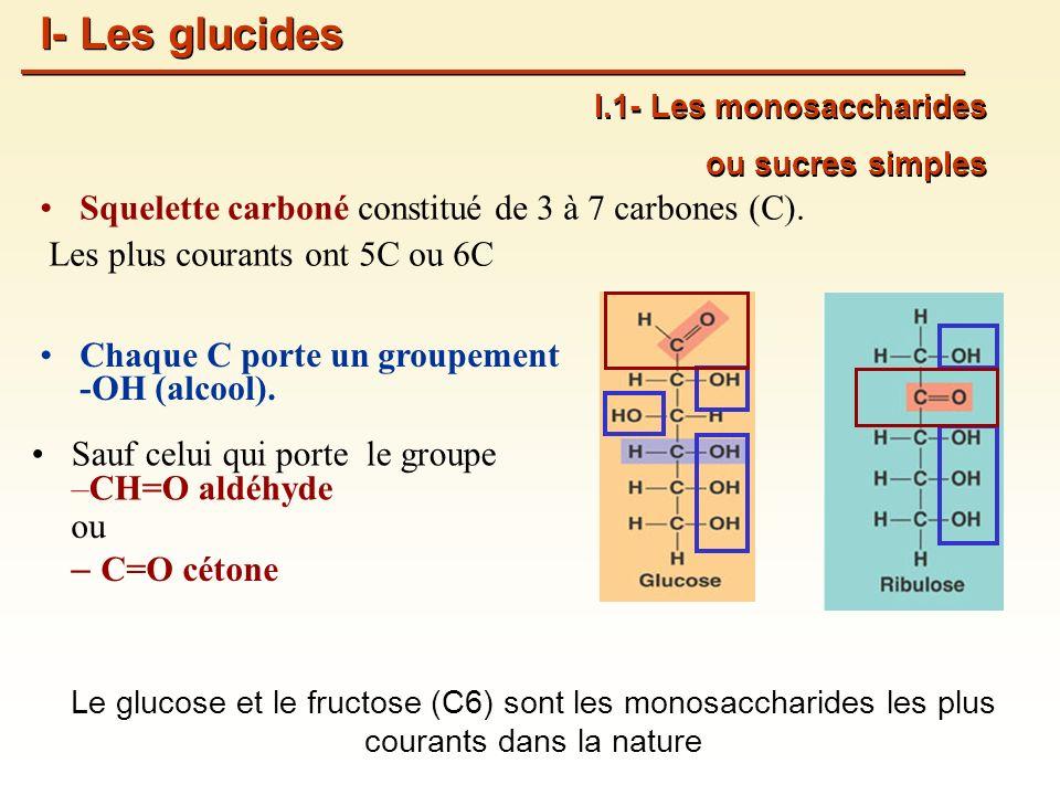 I- Les glucides Squelette carboné constitué de 3 à 7 carbones (C).