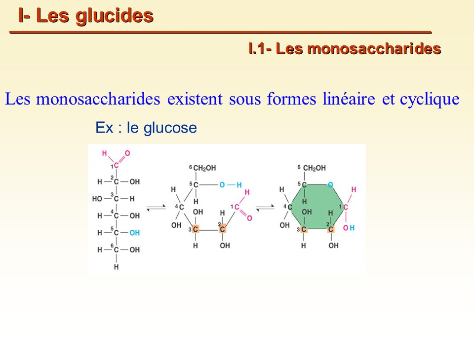 I- Les glucides I.1- Les monosaccharides. Les monosaccharides existent sous formes linéaire et cyclique.