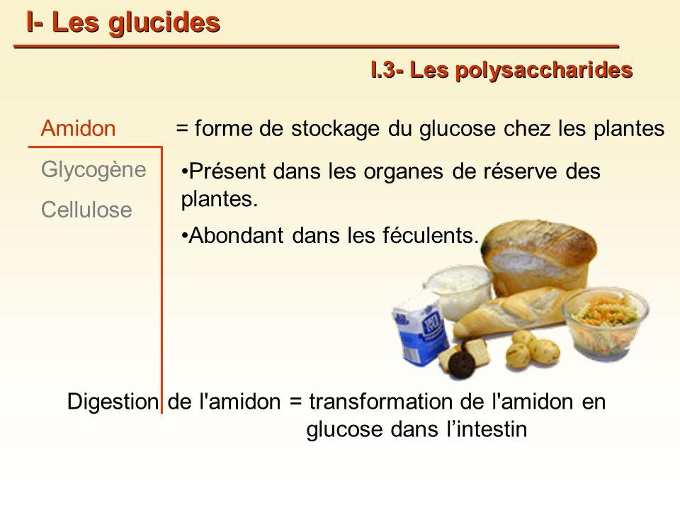 I- Les glucides I.3- Les polysaccharides Amidon Glycogène Cellulose