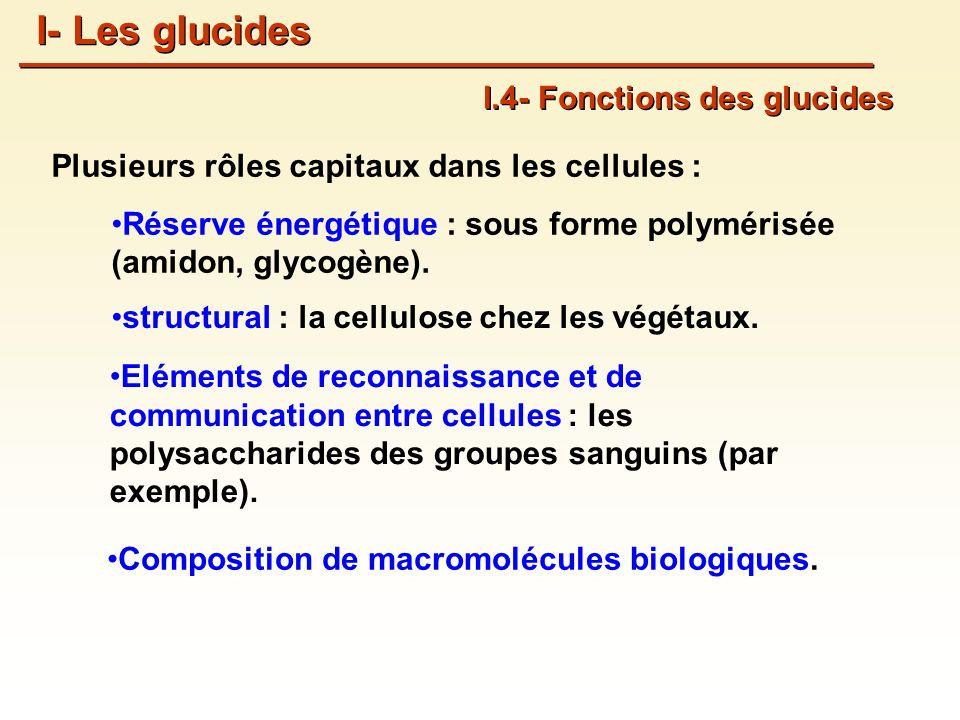 I- Les glucides I.4- Fonctions des glucides