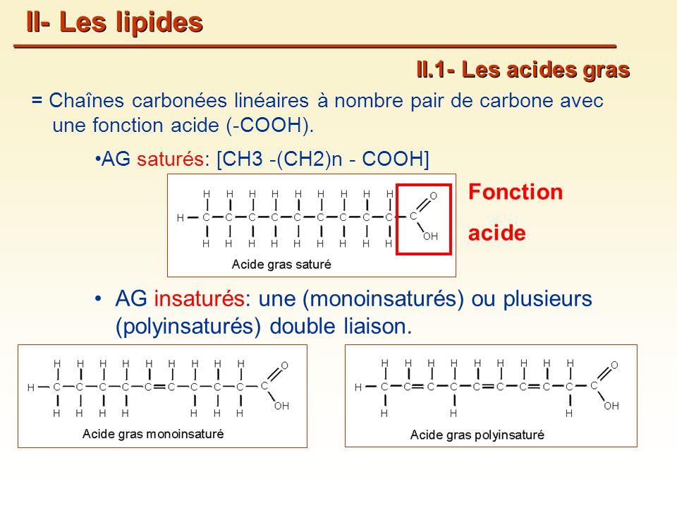 II- Les lipides II.1- Les acides gras Fonction acide