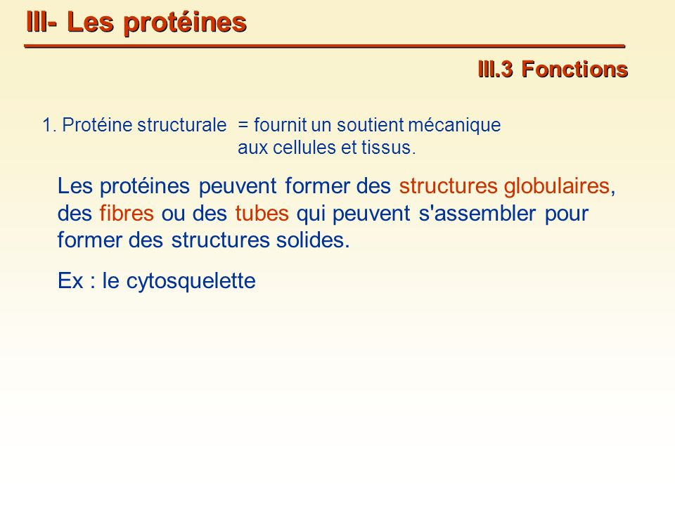 III- Les protéines III.3 Fonctions