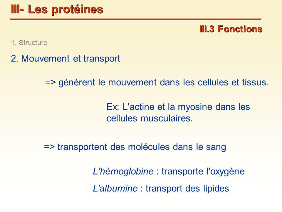 III- Les protéines III.3 Fonctions 2. Mouvement et transport
