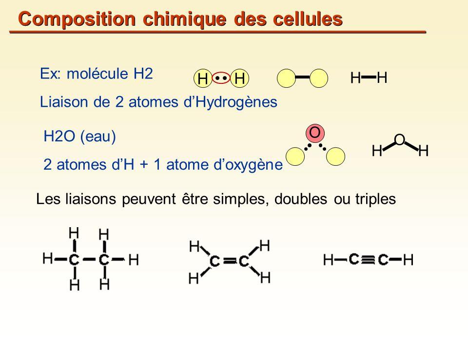 Composition chimique des cellules