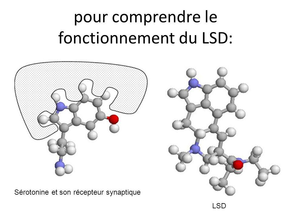 pour comprendre le fonctionnement du LSD: