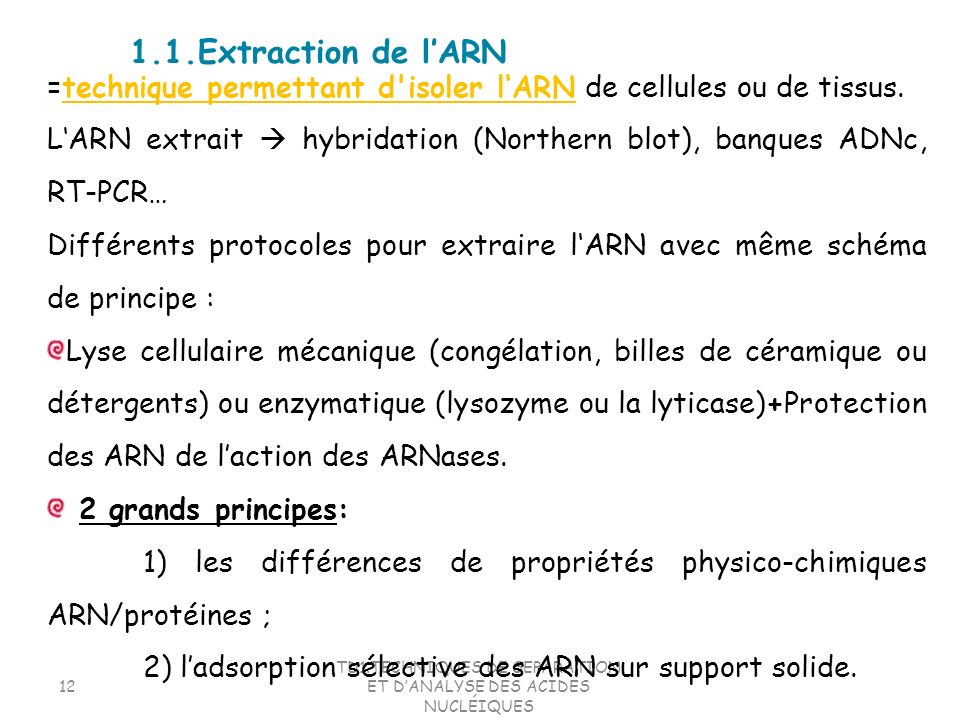 TD1.TECHNIQUES DE SEPARATION ET D'ANALYSE DES ACIDES NUCLÉIQUES