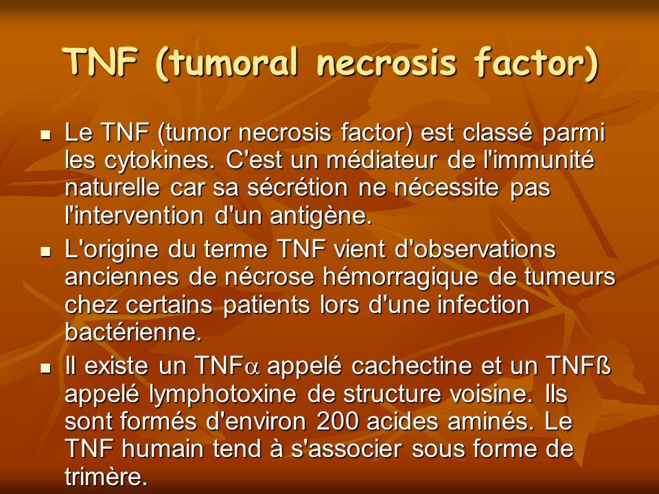 TNF (tumoral necrosis factor)
