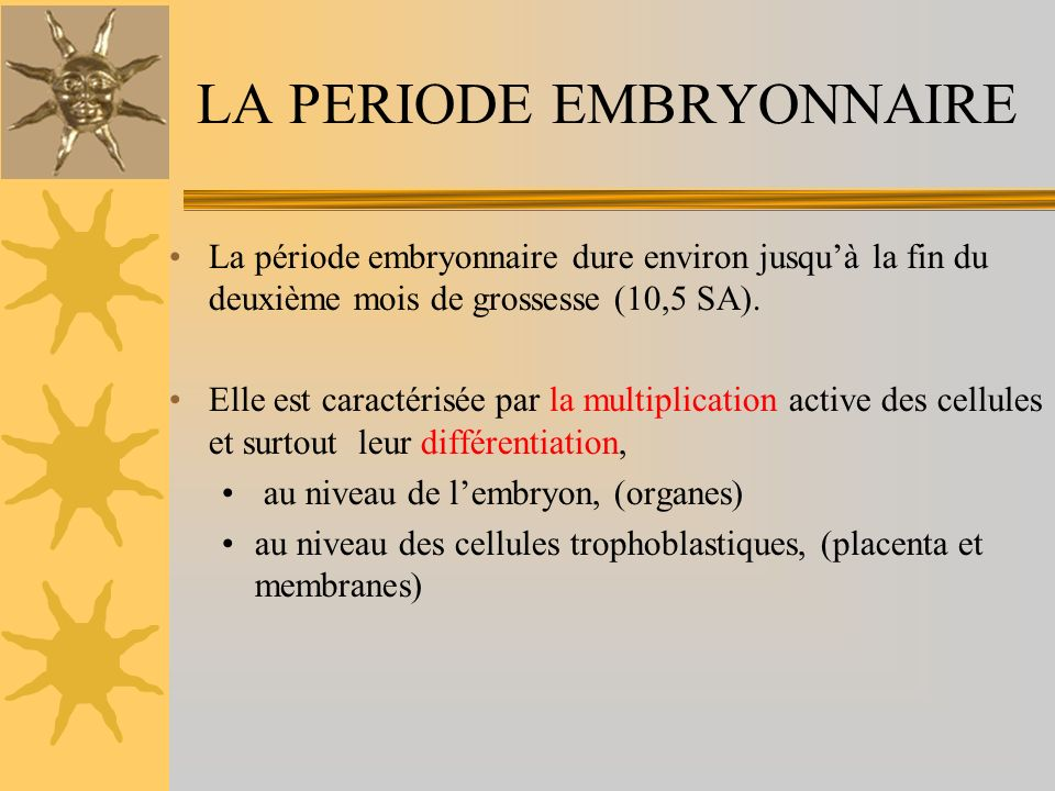 LA PERIODE EMBRYONNAIRE