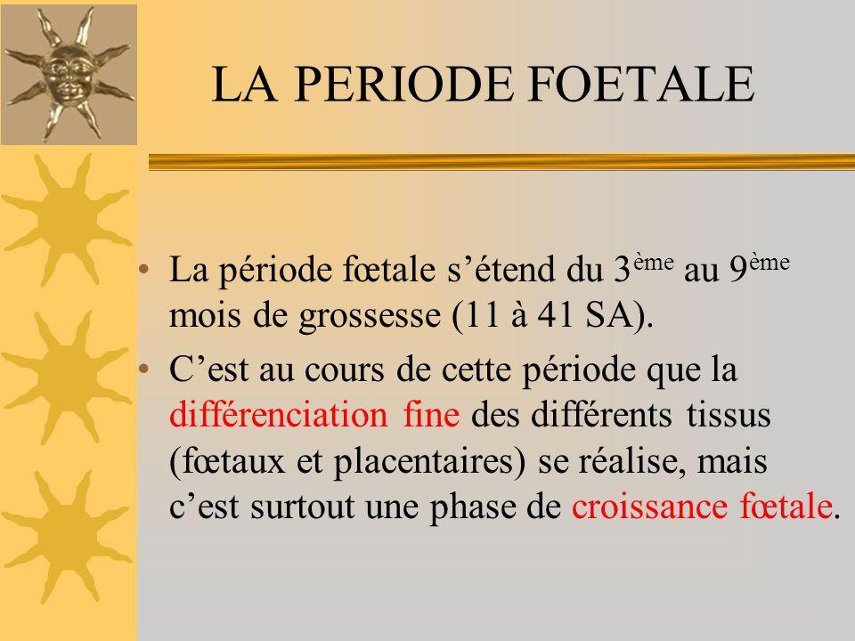 LA PERIODE FOETALE La période fœtale s'étend du 3ème au 9ème mois de grossesse (11 à 41 SA).