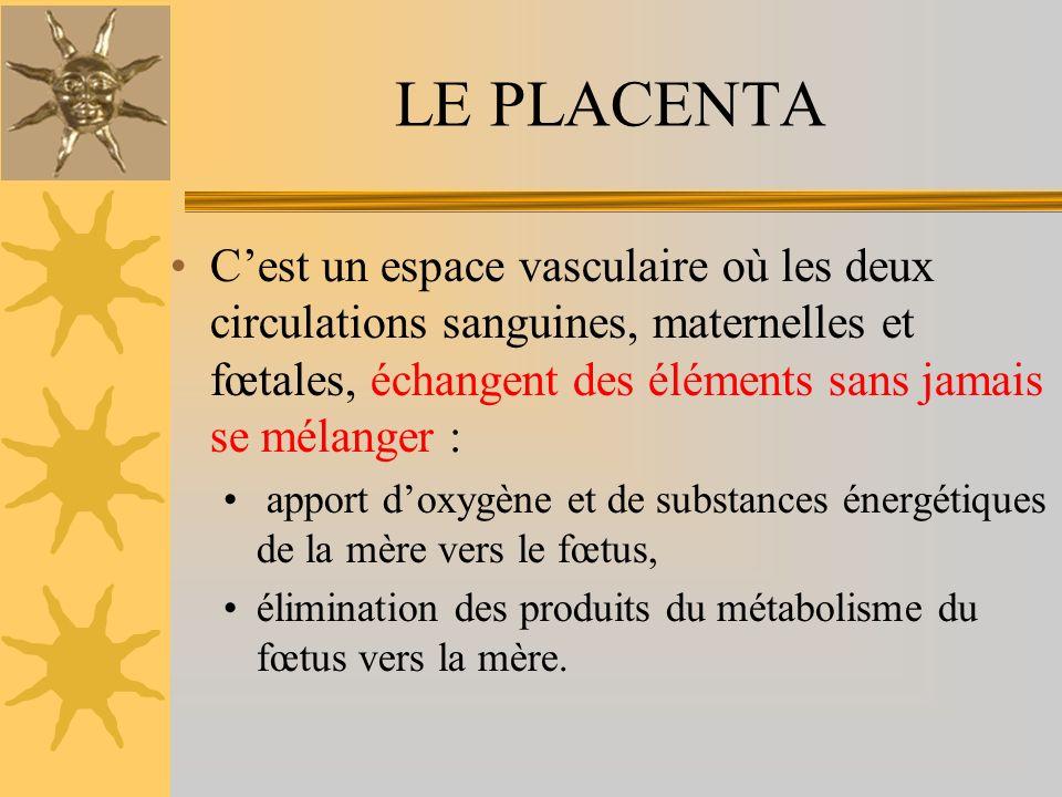 LE PLACENTA C'est un espace vasculaire où les deux circulations sanguines, maternelles et fœtales, échangent des éléments sans jamais se mélanger :