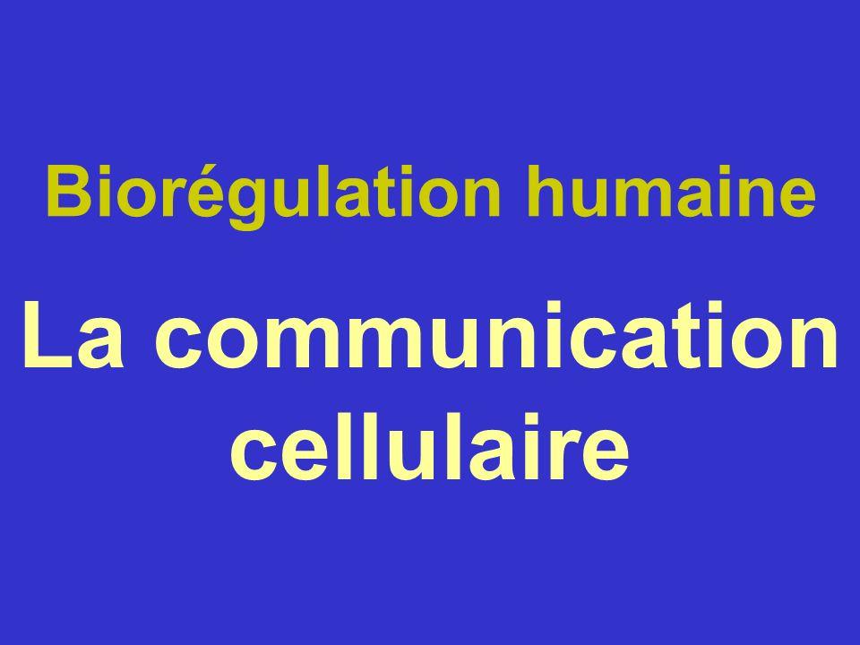 Biorégulation humaine La communication cellulaire