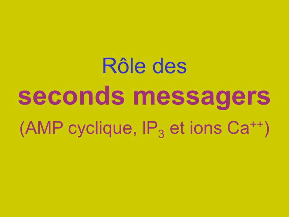 Rôle des seconds messagers (AMP cyclique, IP3 et ions Ca++)