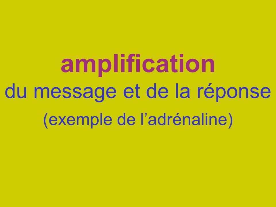 amplification du message et de la réponse (exemple de l'adrénaline)