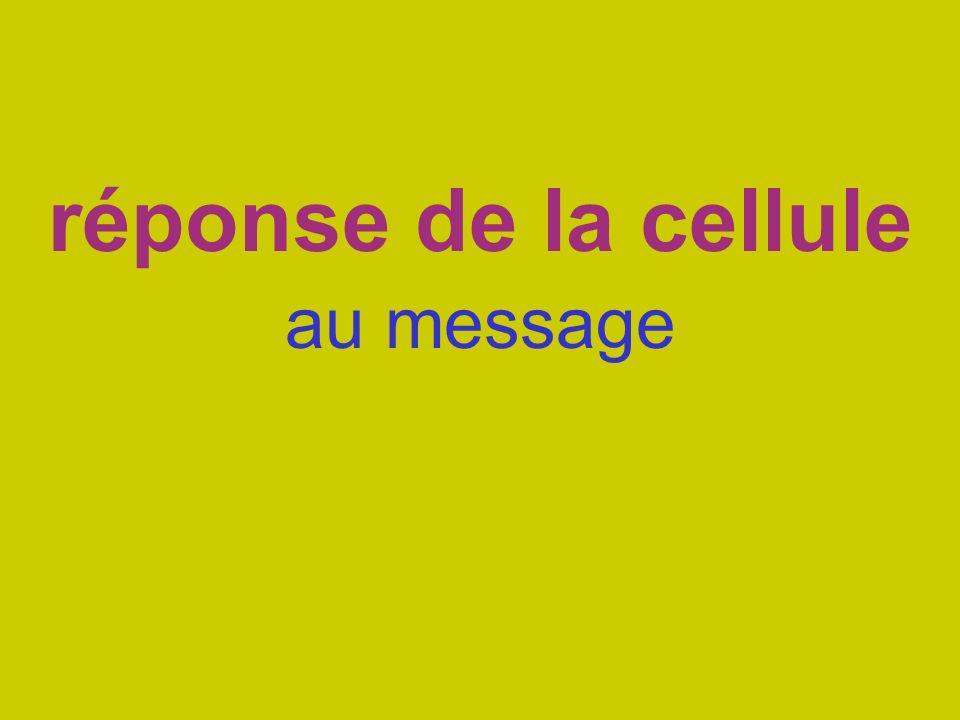 réponse de la cellule au message