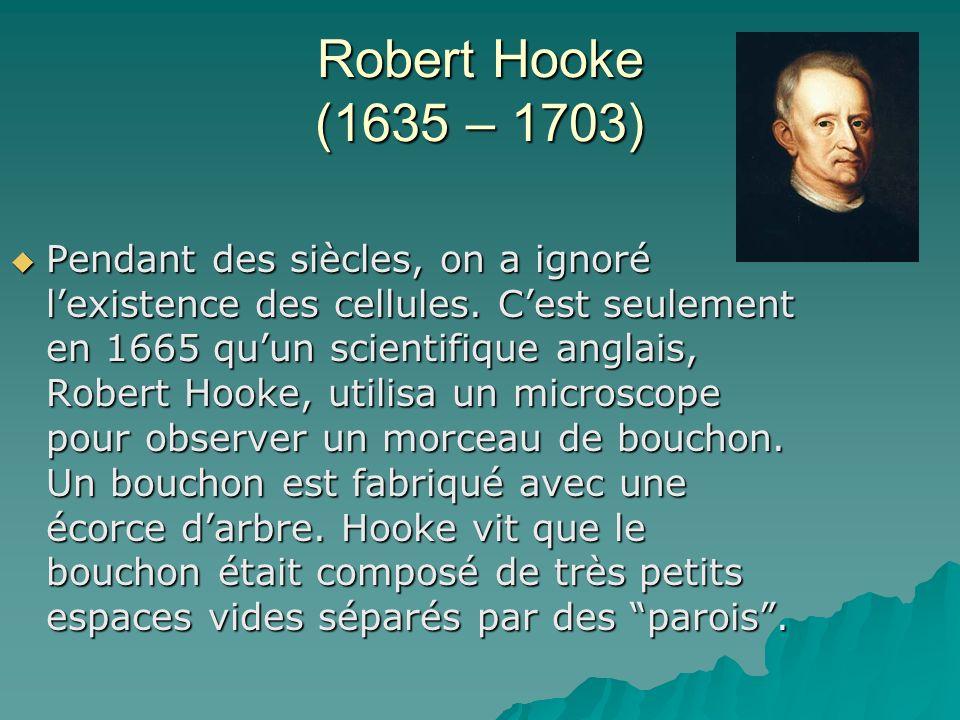 Robert Hooke (1635 – 1703)