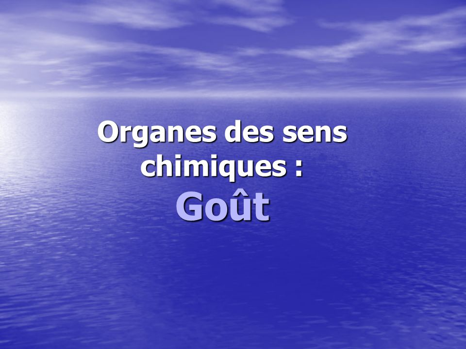 Organes des sens chimiques :