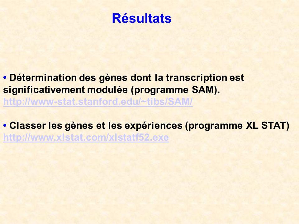 Résultats • Détermination des gènes dont la transcription est significativement modulée (programme SAM).